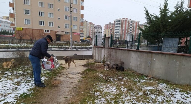 """""""SOĞUK KIŞ GÜNLERİNDE CAN DOSTLARIMIZIN YANINDAYIZ"""""""